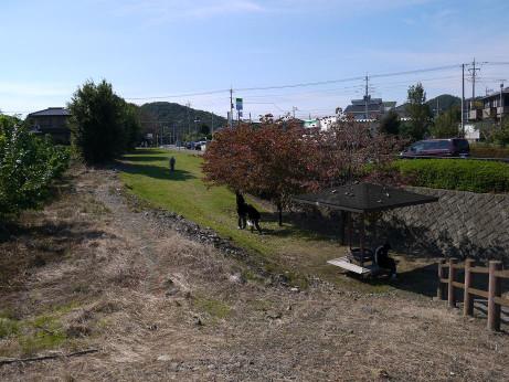 20121031_okanobori_ryokudou2