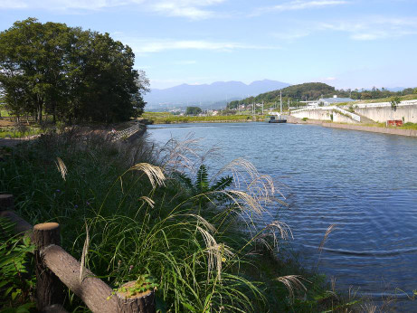 20121107_numa2