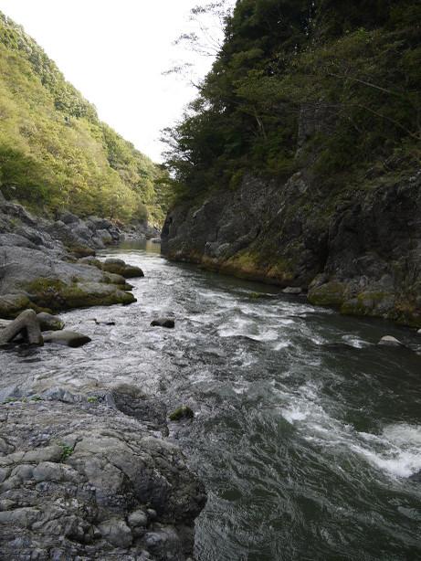 20121111_takatsudo_keikoku1