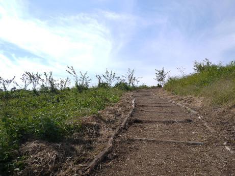 20121112_foot_path2