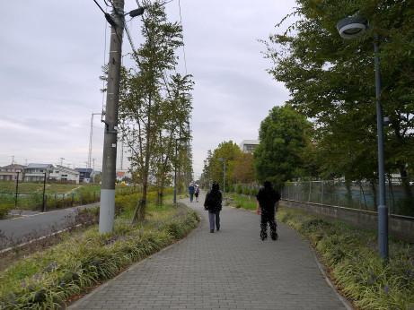20121117_road04