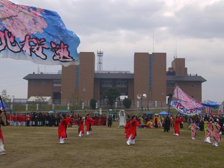 20121119_solan