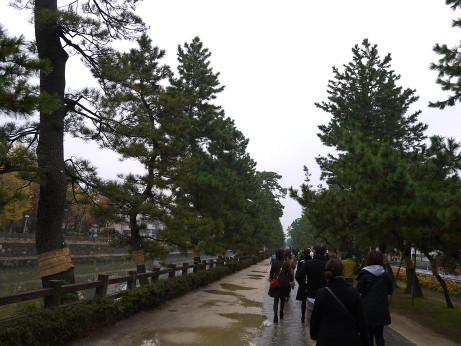 20121124_souka_matsubara_yuhodou