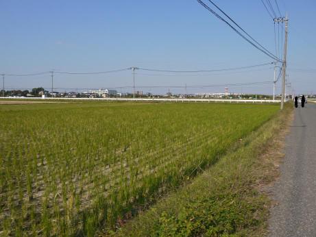 20121129_road02