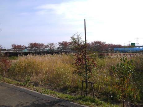 20121130_simin_nouen4