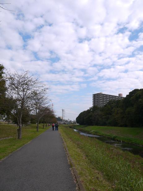 20121201_ooborigawa6