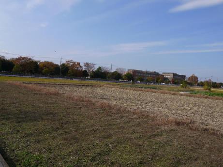 20121213_rikadai1