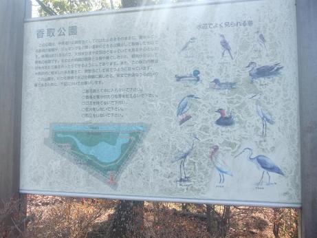 20121218_kandori_park_bord