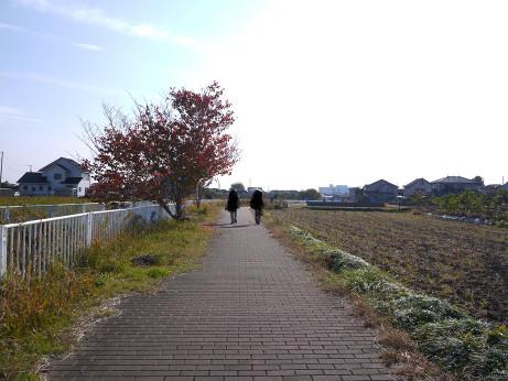 20121218_road05