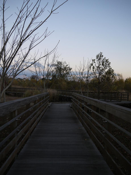 20121221_park2