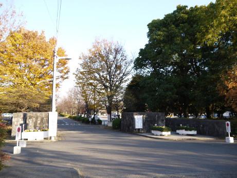 20121230_oomiya_dai2_park_mon