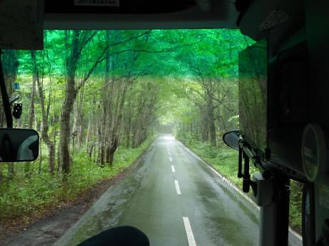 20130109_road1