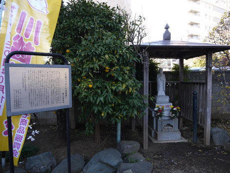20130129_satsumaimo_jizouson1