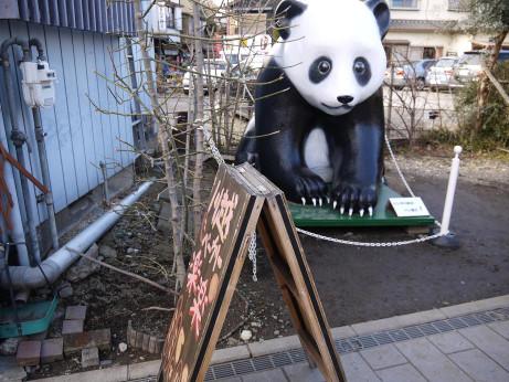 20130214_panda