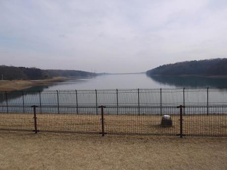 20130223_sayama_lake3