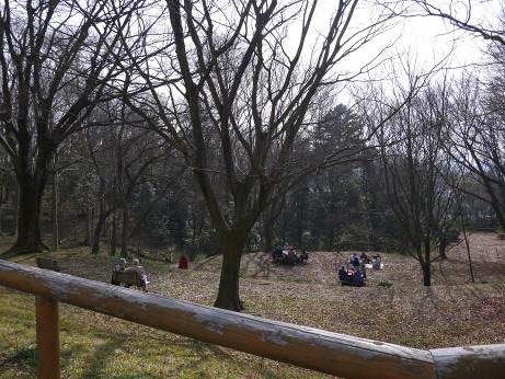 20130228_higashiyamato_park5