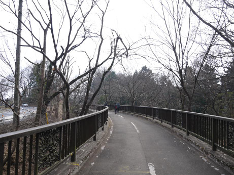20130306_cycle_road
