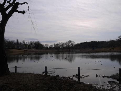 20130328_park4