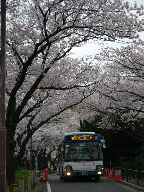 20130402_bus