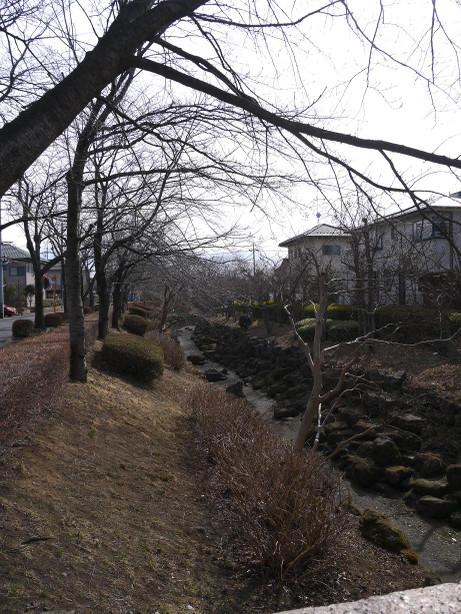 20130411_yakushigawa