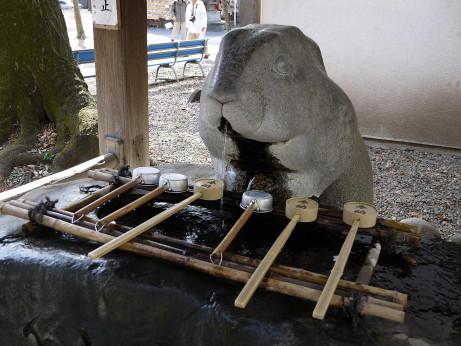 20130421_temizuya_usagi1
