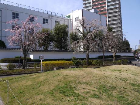 20130511_takasago_syougakkou