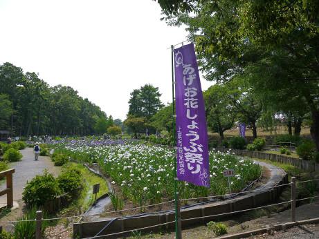 20130611_syoubu1