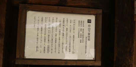 20130621_kyu_yamasitake