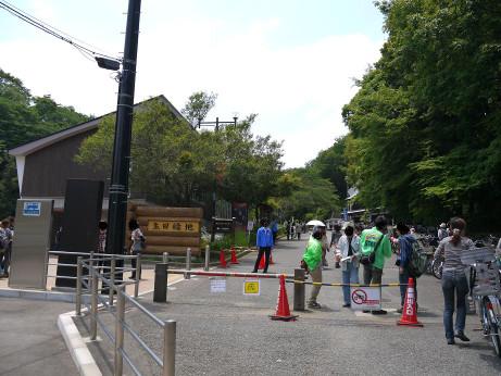 20130625_ikuta_ryokuti