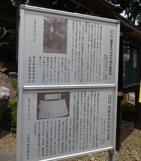 20130702_setumei