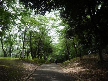20130726_chiba_park