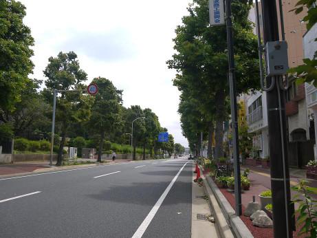 20130726_yurinoki_syoutengai