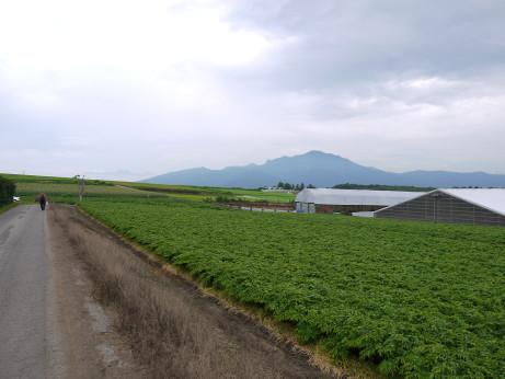 20130821_farm6