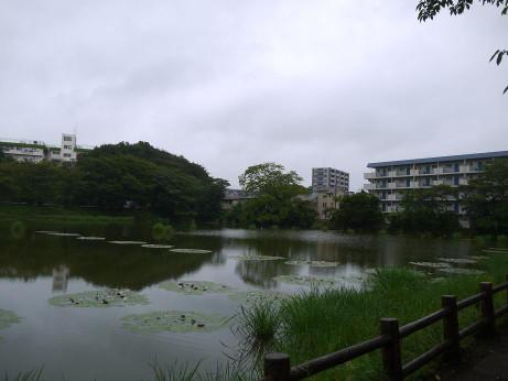 20131022_sirahatanuma2
