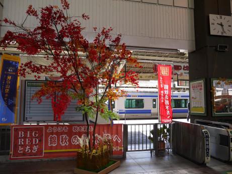 20131028_kuroiso_st_1