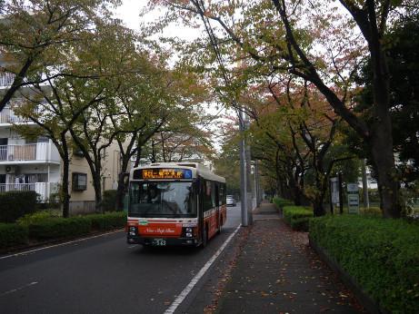 20131105_bus