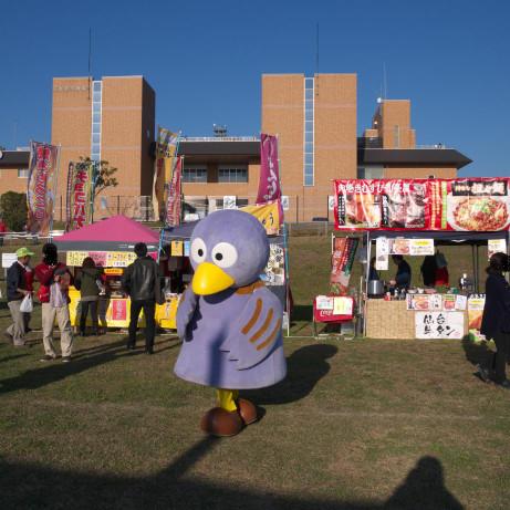 20131117_kobaton