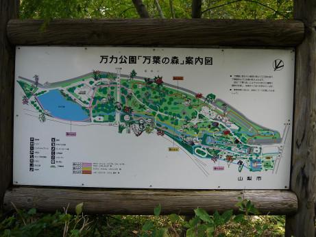 20131122_map