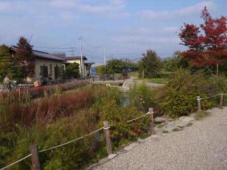 20131124_kanogawa_hiroba2