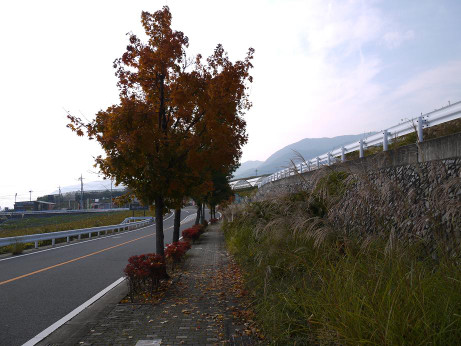 20131127_road1