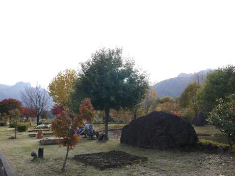 20131210_park