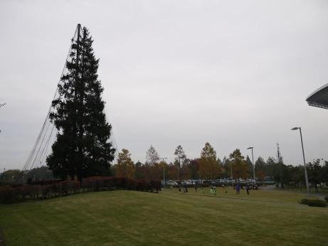 20131211_mominokihiroba