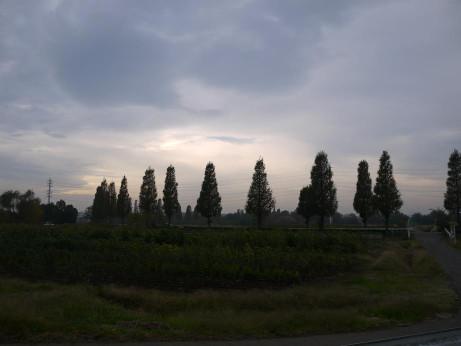 20131213_namiki01