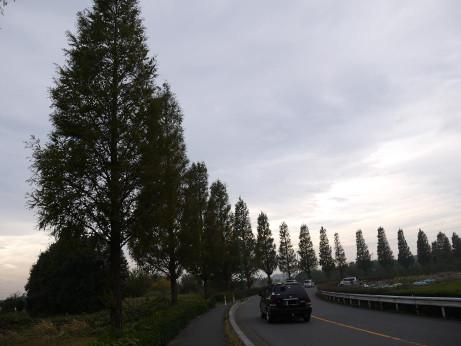 20131213_namiki02