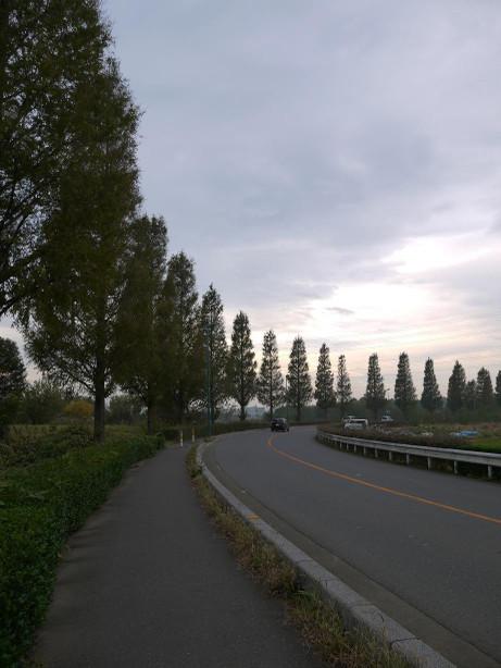 20131213_namiki03