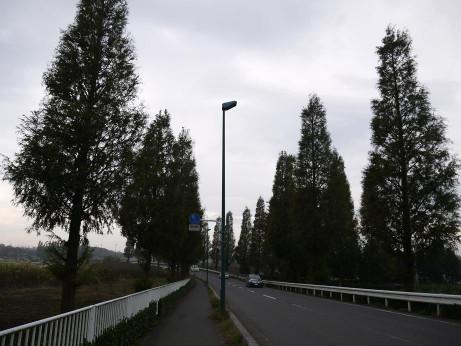20131213_namiki04