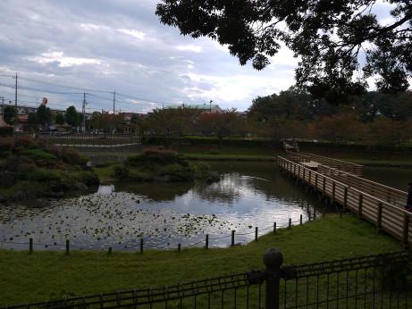 20131217_inumagata_park