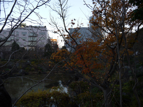 20131223_park3