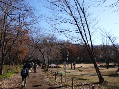 20131224_golf