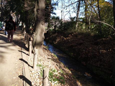 20131224_honda_ryokudou2